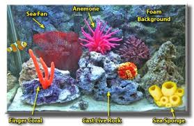 tutorials on how to make aquarium decorations dive shop