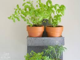 luxury indoor herb garden pots u2013 maisonmiel