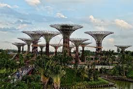 thursday salute to originals singapore s solar powered trees