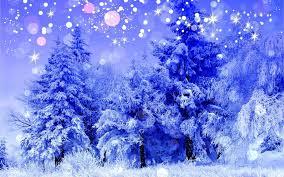 holidays christmas bokeh sparkle snowing flakes nature trees