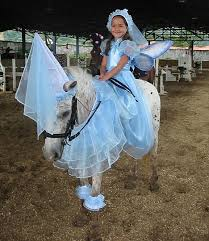 christmas horse dress up ideas 2016 horses costumes pictures