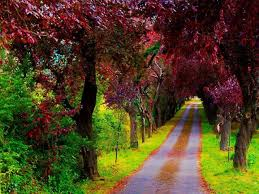 the most beautiful scenery in the world most beautiful places in
