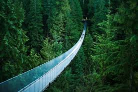 Top 5 Beautiful Places In The World by Things To Do In Vancouver 5 Perfect Family Hikes Clipper