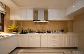 Kitchen Cabinet Styles Of European Style Open Kitchen Cabinets With European Kitchen