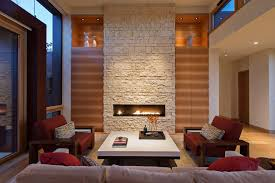 Contemporary Gas Fireplace Insert by Minneapolis Modern Gas Fireplace Living Room Transitional With