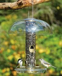 backyard bird centre canada u0027s bird feeder specialty shop since 1995