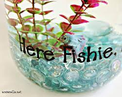 Beta Fish In Vase Pickle Jar Fish Bowl U0027a Casarella