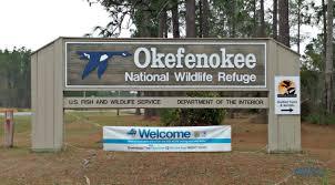 Georgia coast road trip day 6 okefenokee national wildlife refuge