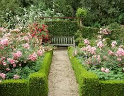 Shrub Garden Ideas 10 Best Low Maintenance Shrubs For Your Landscaping