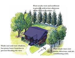 landscaping tip plant a deciduous tree on the southwest corner of