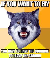 Crazy Wolf Meme - new 20 crazy wolf meme wallpaper site wallpaper site