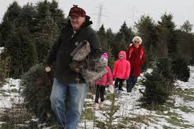 area christmas tree farms keep it real for the holidays jasper