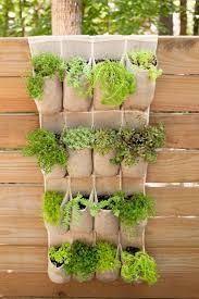 Wall Mounted Herb Garden by 33 Best Vegetable Herb Gardens Images On Pinterest Plants