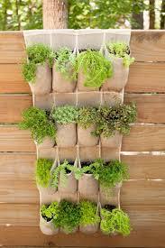 Diy Herb Garden Box by 33 Best Vegetable Herb Gardens Images On Pinterest Plants