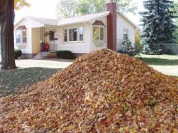 Fall Cleanup Landscaping by Spring And Fall Yard Cleanup Services By Woehler Landscaping In