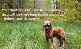 grieving the loss of a pet 13 dog loss quotes comforting words when losing a friend