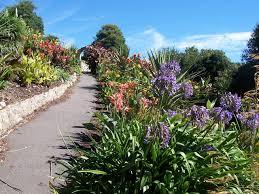 Ventnor Botanic Gardens File Tropical Border And Arch Within Ventnor Botanic Garden