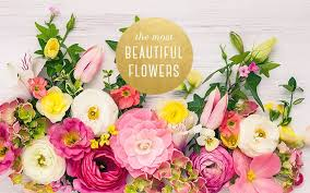 Pictures Of Beautiful Flowers In The World - the 20 most beautiful flowers you u0027ll ever see ftd com