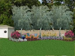 Evergreen Landscaping Ideas Attractive Privacy Landscaping Ideas 1000 Images About Evergreen