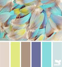 feathered hues design seeds feathers design seeds and baby blue