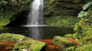 imagenes monumentos naturales de venezuela el primer monumento natural de venezuela masverdedigital com