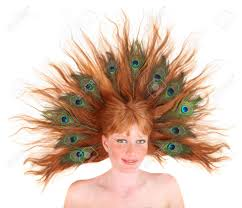feathers in hair with peacock feathers in hair on white background