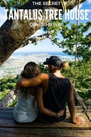 Hawaii travel noire images Closed tantalus treehouse hidden in the mountains treehouse jpg