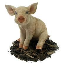 sitting piglet pig resin garden ornament 15 19 garden4less
