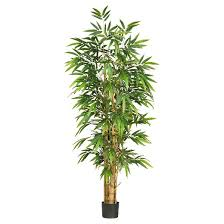 nearly 6 belly bamboo silk tree target