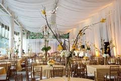 wedding drapery atlanta wedding event drapery reviews