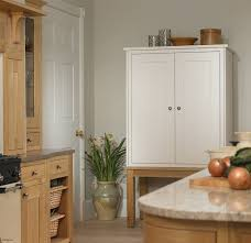 top 25 best kitchen pantry cabinet freestanding ideas on