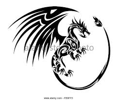 tribal dragon tattoo stock photos u0026 tribal dragon tattoo stock