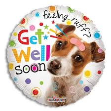get well soon balloons feeling ruff get well soon balloon the atrium gift shop