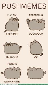 Pusheen Cat Meme - animal gifs pusheen gifs of funny animals cheezburger