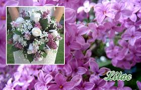 wedding flowers ta may wedding flowers lilac wisteria cherry blossom wedding decor