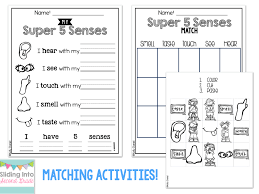 label the parts of body worksheet for grade 1 with additional free