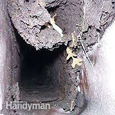How To Clean Fireplace Chimney by How To Clean A Chimney Family Handyman