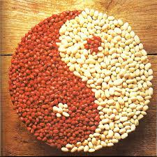 herbal medicine u0026 food therapy u2014 oriental medicine project