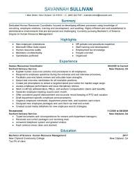 Best Resume Examples For Sales by Resume Examples Of Cover Letters For Teachers Resume Word