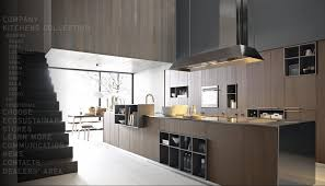 Images Of Modern Kitchen Designs Modern Kitchens From Cesar