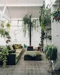 Interior Plant Wall 25 Best Pothos Plant Ideas On Pinterest Pothos Vine Window