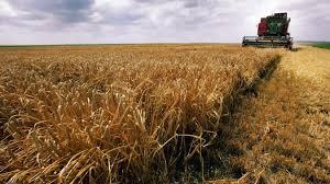 chambre agriculture ardennes dans les ardennes on va expérimenter l échange de terre agricoles