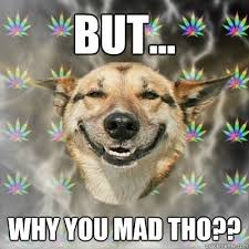 but why you mad tho stoner dog quickmeme