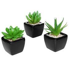 amazon com set of 3 modern home decor mini succulent artificial