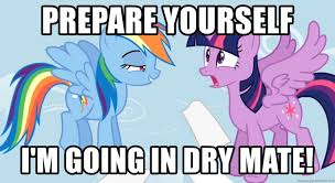 My Little Pony Meme Generator - prepare yourself i m going in dry mate my little pony what did