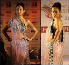 sari traditional indian women u0027s dress