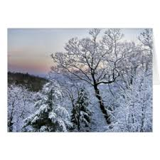 blue mountains greeting cards zazzle
