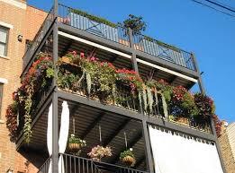 emejing apartment gardening ideas contemporary home decorating
