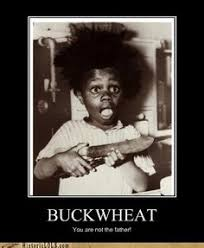Buckwheat Meme - in the name of the father the son the holy shit that old hag