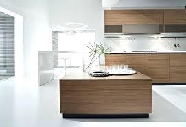 Walnut Kitchen Designs Contemporary Walnut Kitchen Cabinet Walnut Kitchen Cabinets In The